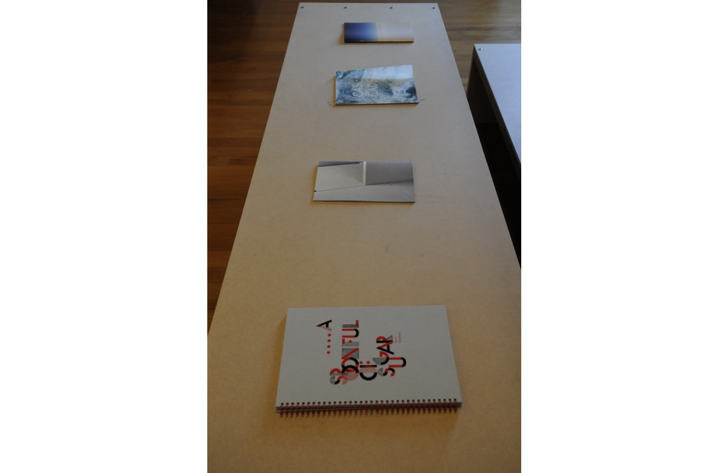 "Installation image of ""Open Book"", Ramp Gallery Apr 2016. Including: Ann Shelton, Shelley Jacobson,"